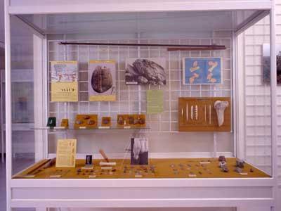 Museo da Prehistoria e Arqueoloxía de Vilalba