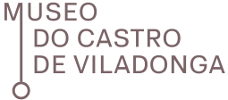 Logotipo de Castro de Viladonga Museum