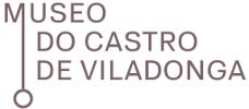 Logotipo de Museo del Castro de Viladonga